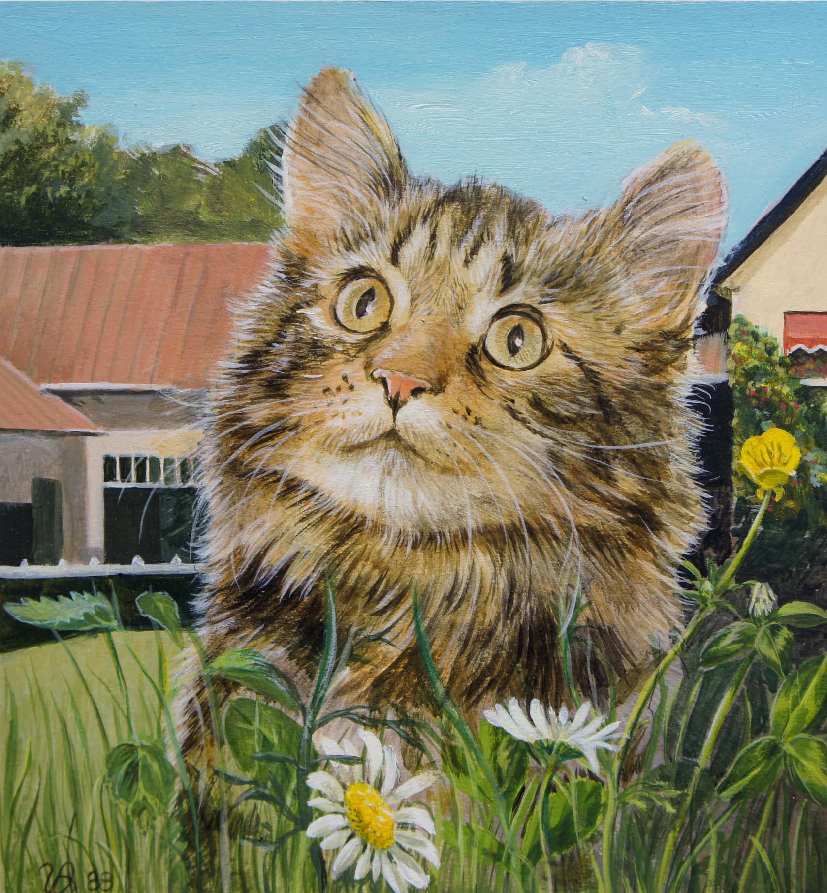 gattino tra fiori di campo