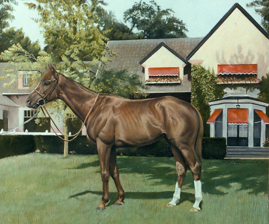 Cavallo in scuderia